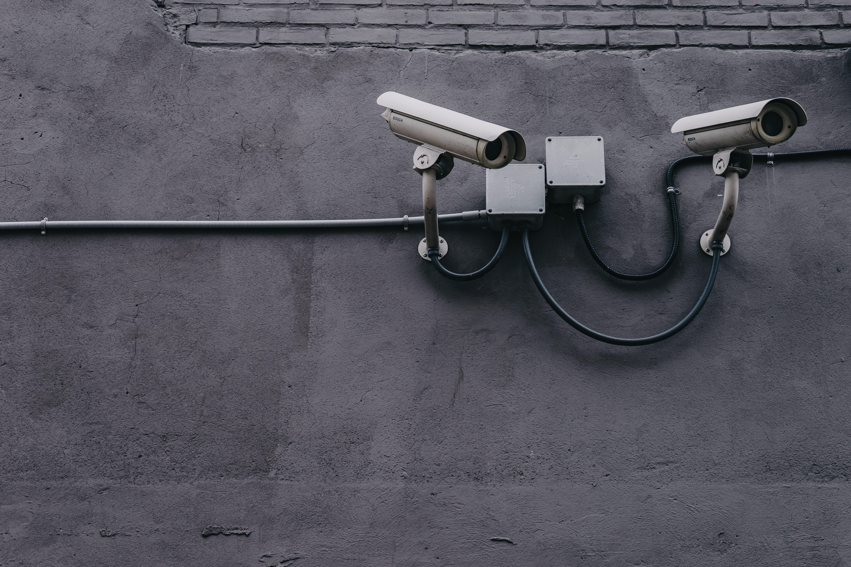 security, privacy, digital development, digital principles