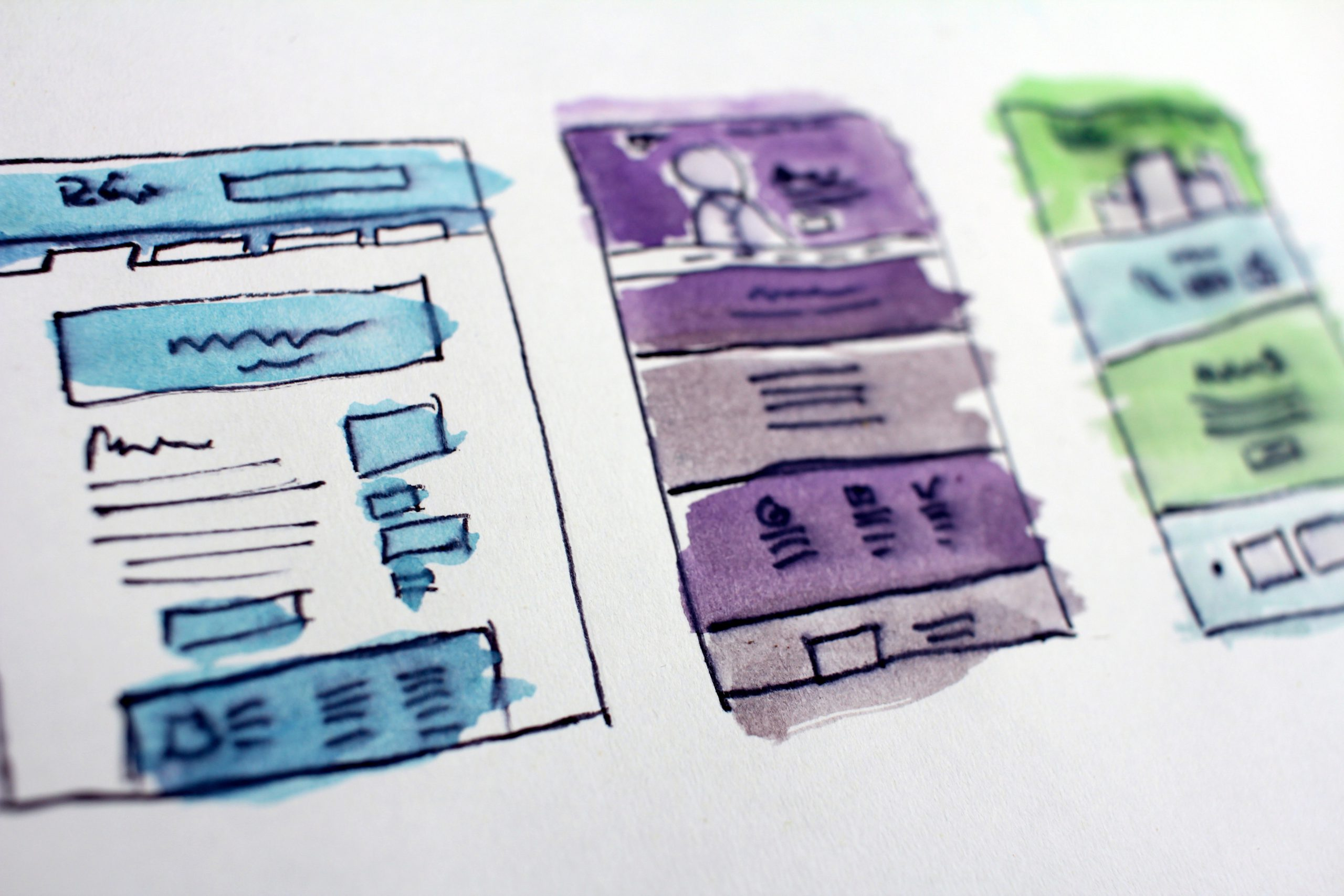 layout, design, wordpress, website